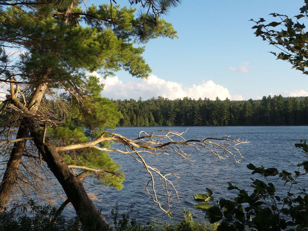 Vue sur le lac Johnston de notre emplacement de camping