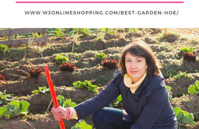 Awesome Gardening Tips for Inspiration