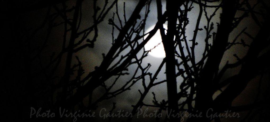 Photos - Thèmes - Lune