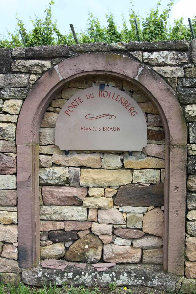ORSCHWIHR : LE BOLLENBERG, SANS MYSTÈRE (R 438) - 7,8 km - D+ 157 m - 2 h 15 mn - 2/6