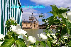 Qui a gagné ses entrées pour les Journées des Plantes de Chantilly ?