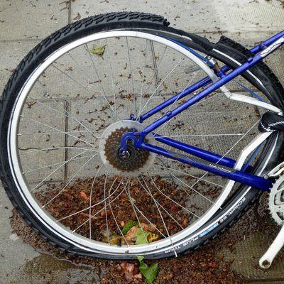 Grenoble aime le vélo...