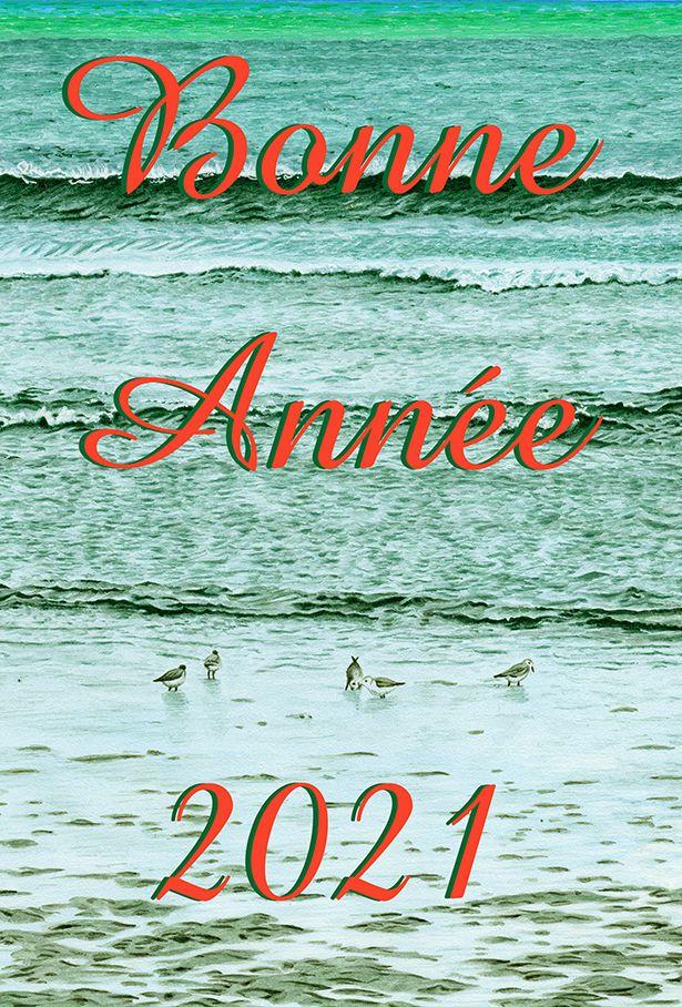 bonne année de la part de Fabienne Monnier, peintre a tempera
