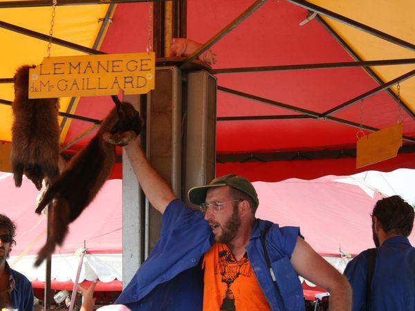 le manege gaillard, mécanique , à la force des bras! festival aurillac.  sur charlotteblabla blog