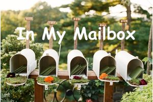 In My Mailbox (253)