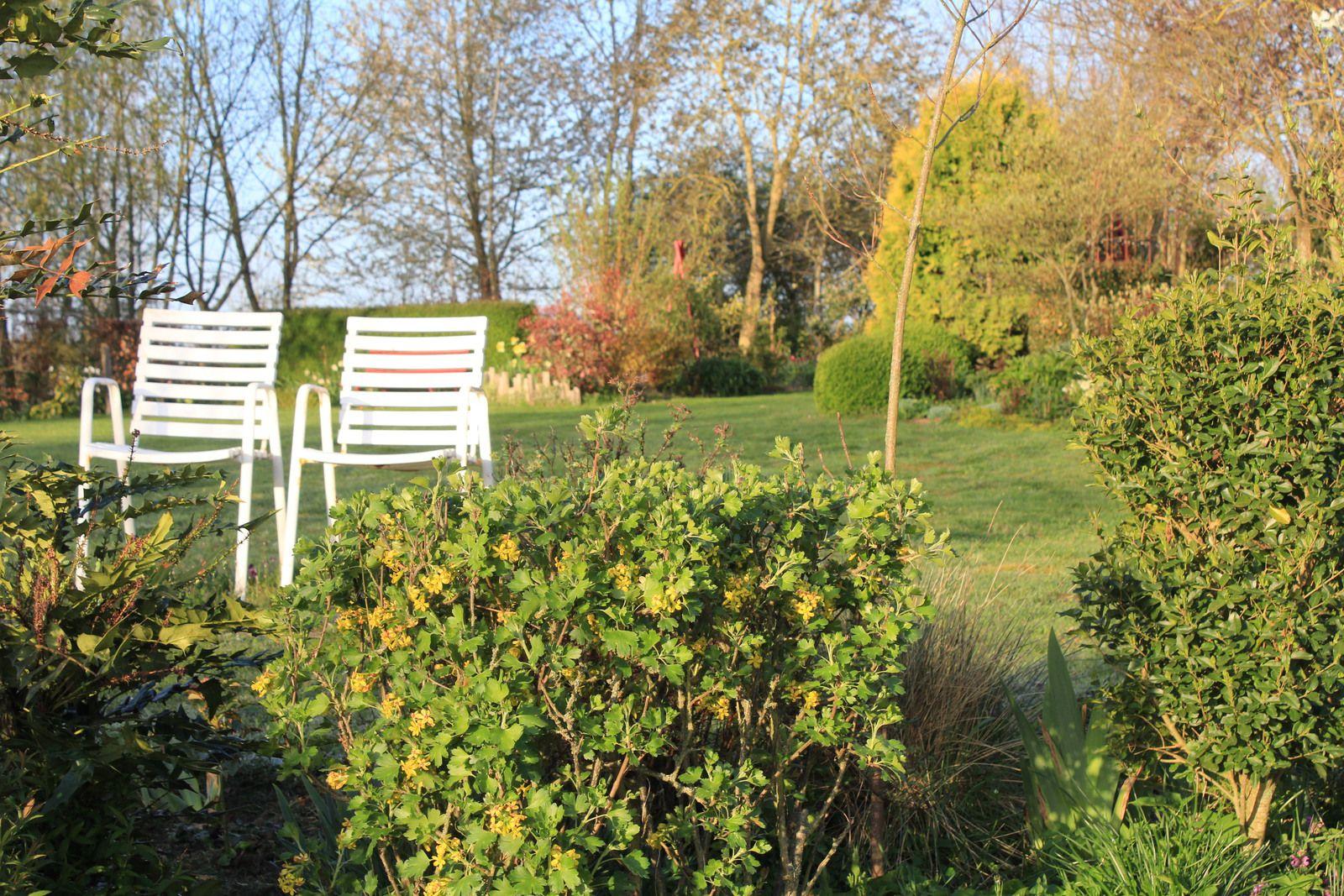 Les arbres ont la première place, ce sont eux son squelette, sa structure. Les fauteuils nombreux dans le jardin pour se poser respirer méditer ...faire rien!