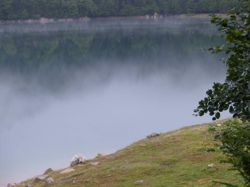 Les lacs : Bious-Artigues, Roumassot, Miey, Gentau, Bersau, Castérau, des cascades, des animaux tout le long du parcours, le gîte d'Ayous, havre de paix, des fleurs partout, des iris en plein juillet... le Pic du Midi d'Ossau,