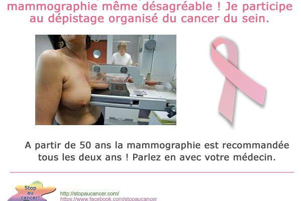 Cancer du sein, octobre rose le mois du dépistage