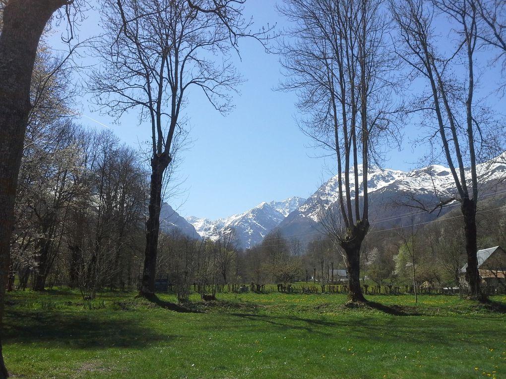 Les travaux de printemps au gite Larribère