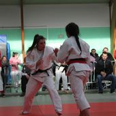 Championnat Départemental Juniors - Le blog officiel du dojo plouescatais