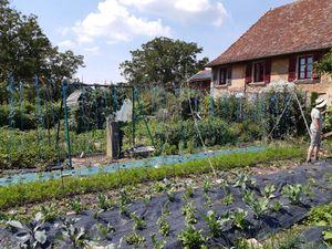 Ce samedi visite du jardin de Gaëtan LEBORGNE à Faverges de la Tour, potager de 300m² plus 3 bacs (aromatiques, artichauts et courges) productif pour 5 personnes. Gaëtan nous a donné des trucs et astuces sur l'agroécolologie, les semences, les plans, le paillage et les amendements. Utilisation de bâches perméables au sol et tuyau goutte à goutte pour arrosage, paillage, jardin utilisé toute l'année et petite serre.