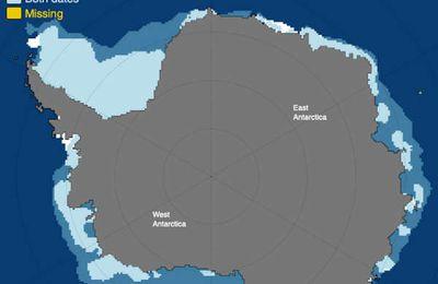 Forte augmentation de l'étendue de la banquise en Antarctique