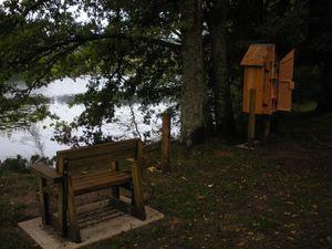 Qu'est devenue la cabane à livres de l'étang des Cloix ?