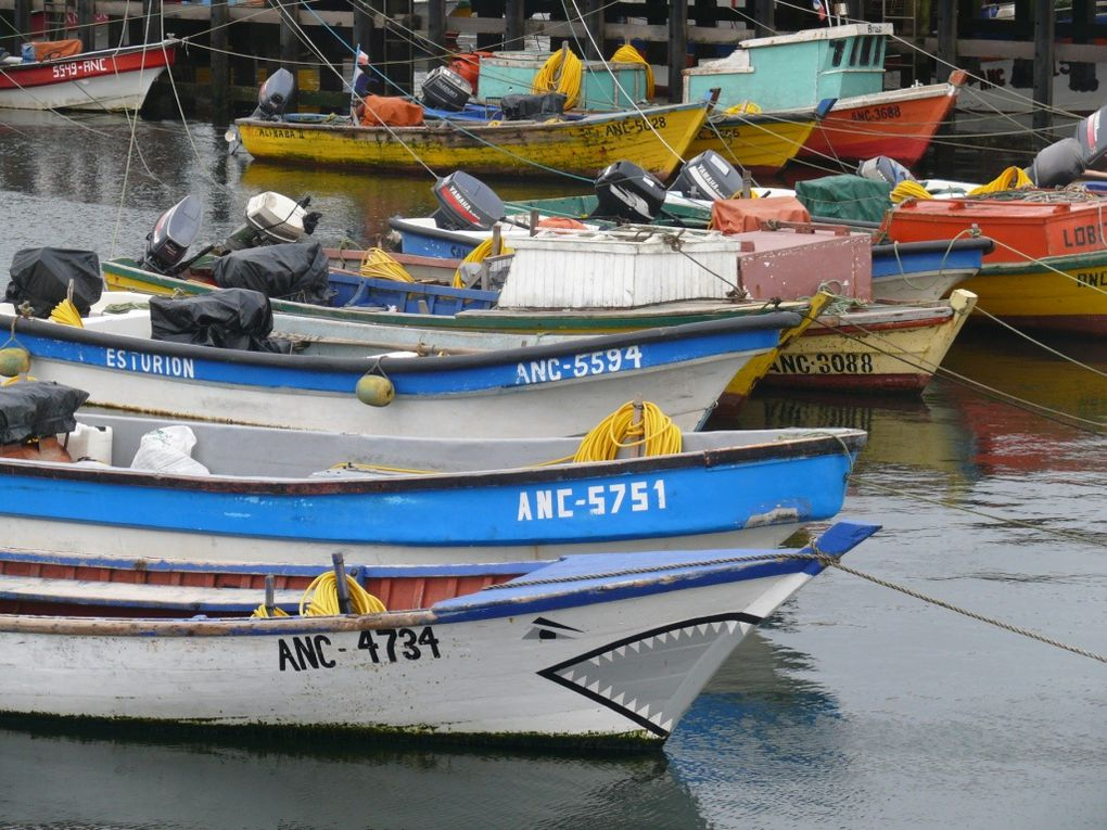 De Puerto Natales à Chiloé