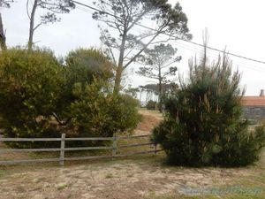 Jaureguiberry (Uruguay en camping-car)