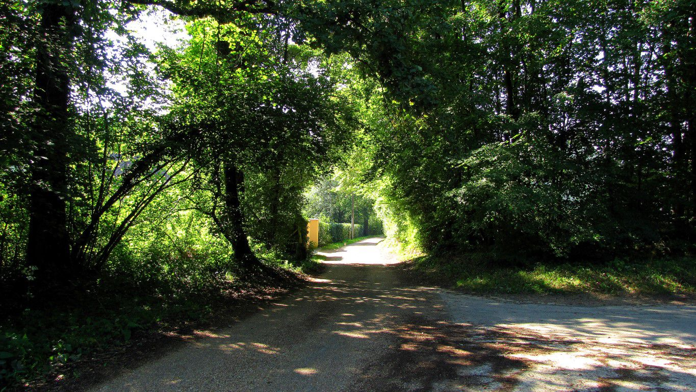 le GR12A dans les Forêts de Compiègne et de Laigue
