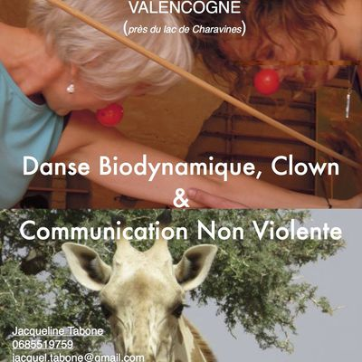CNV/clown relationnel-danse biodynamique