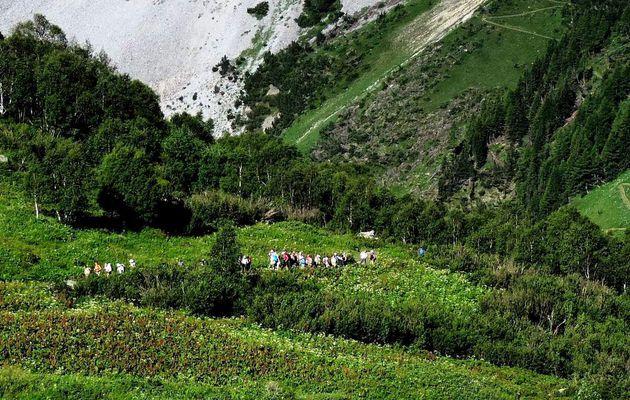 Col du Vallonnet et Roc du Blanchon à Pralognan en Vanoise avec l'ADAPAR le 18.07.14