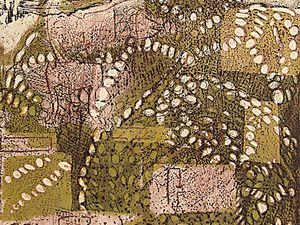 Vernis mou et pointe sèche, 34 x 27 cm / Monotype sur plaque gravée, 34 x 27 cm