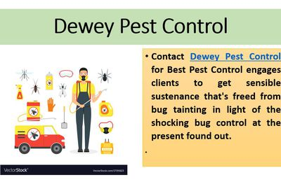 Dewey Pest Control Services is the Solution To Your Pest Issue