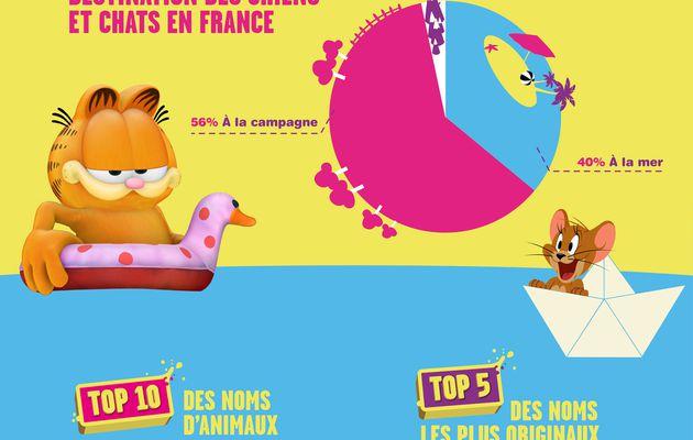 Infographie : Où les animaux des Français passent l'été ?