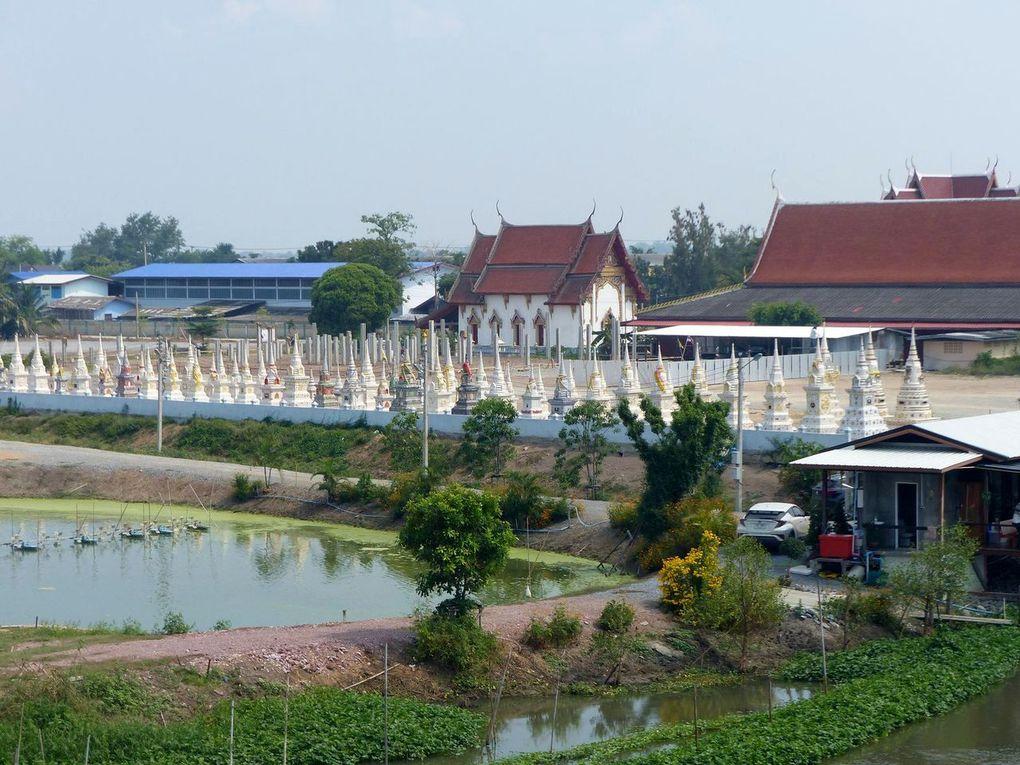 Balade dans la province de Suphan Buri.