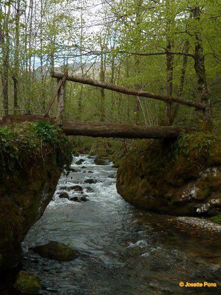 Pour franchir les ruisseaux de nos montagnes les hommes ont construit des ponts plus ou moins larges.