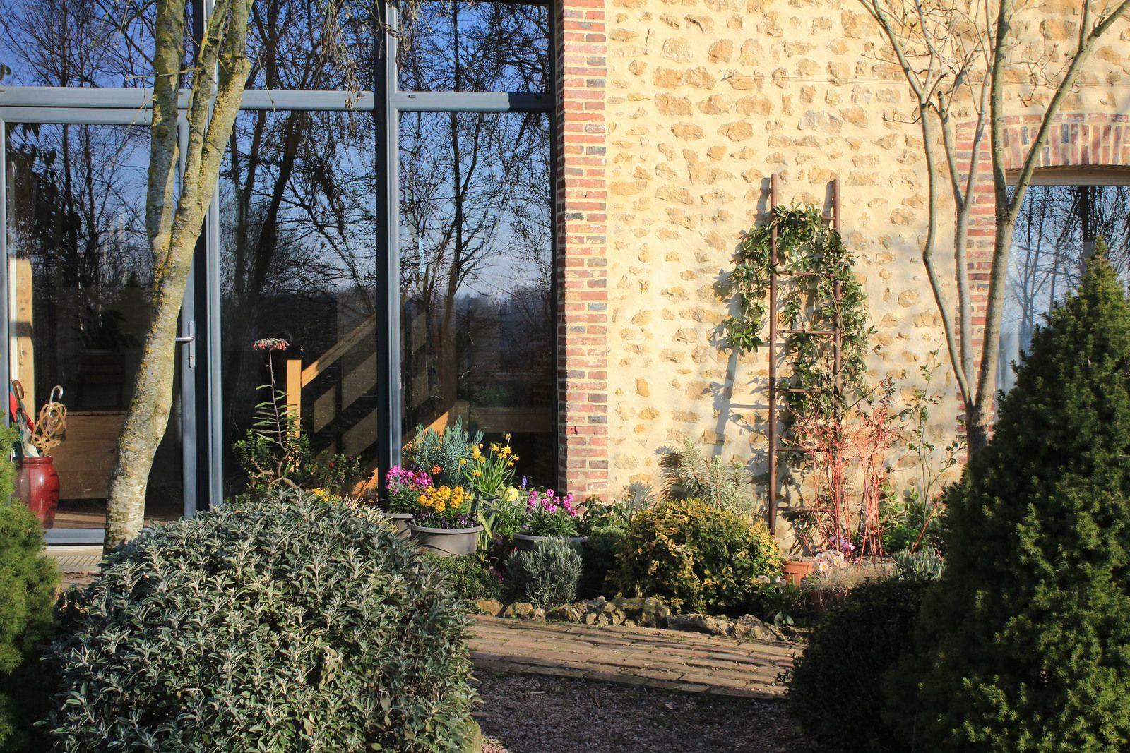 devant la maison on s'offre quelques potées très colorées et éphémères le temps d'un bel hiver décalé