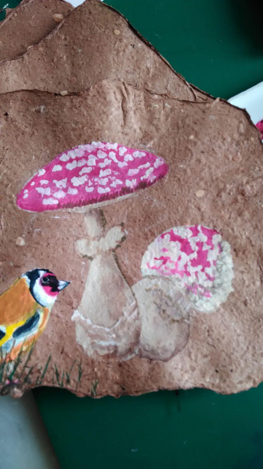 Suite et fin champignons,papillons,oiseaux