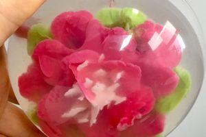 Mon premier essai de fleurs en agar agar, quelques conseils pour débuter.