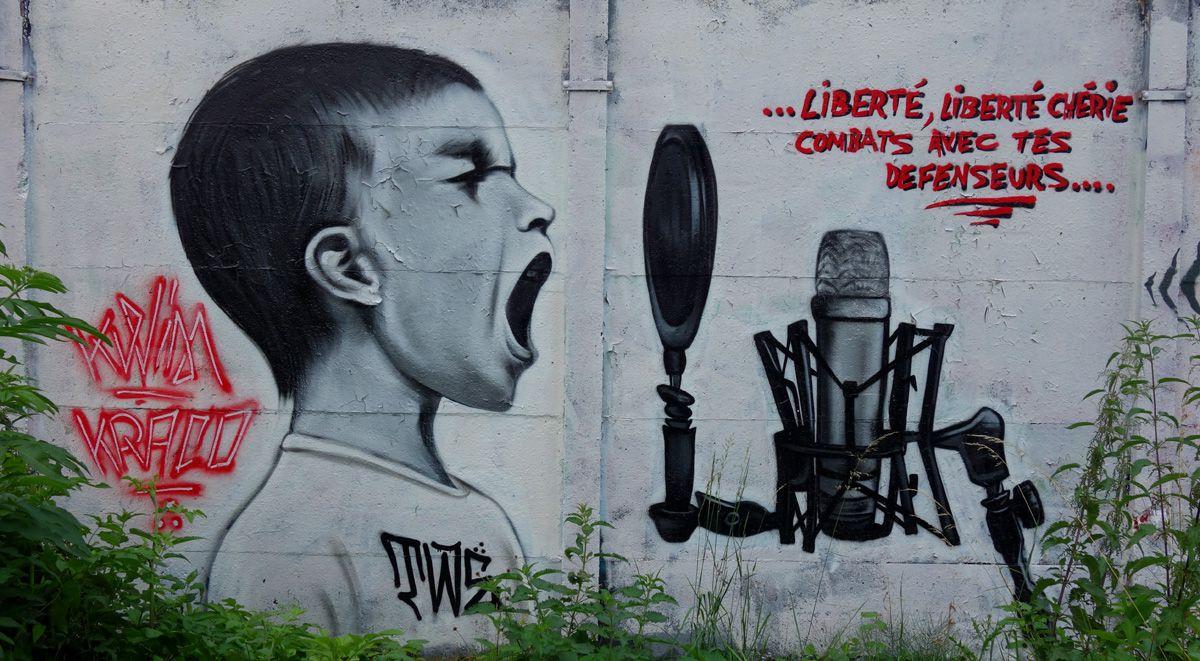 Street Art : Graffitis & Fresques Murales  91600 Soisy sur seine