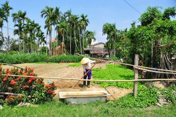 Good morning Vietnam  (partie1/2)