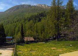 TENDE VAL CASTERINO - SEMI MARATHON 19.5 kms -. 15.8.1992
