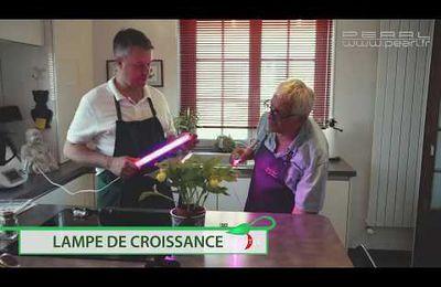 Lampe de croissance ou sabrolaser Jedi ... on craque avec Jean-Paul le Jardinier :D
