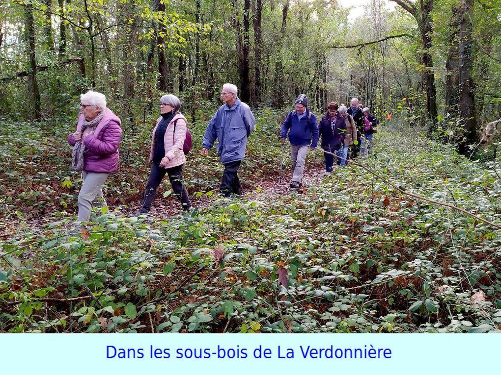 """Les """"8 Km"""" """"Carquefou"""" et """"La Goulaine au cœur de l'automne"""""""