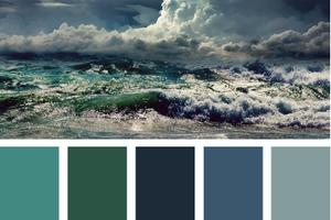 Design Seeds : une vraie explosion de couleurs !