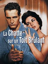 La chatte sur un toit brûlant  ( Cat on a hot tin roof )