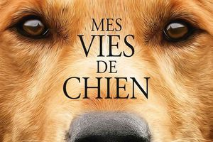 MES VIES DE CHIEN (A Dog's Purpose)