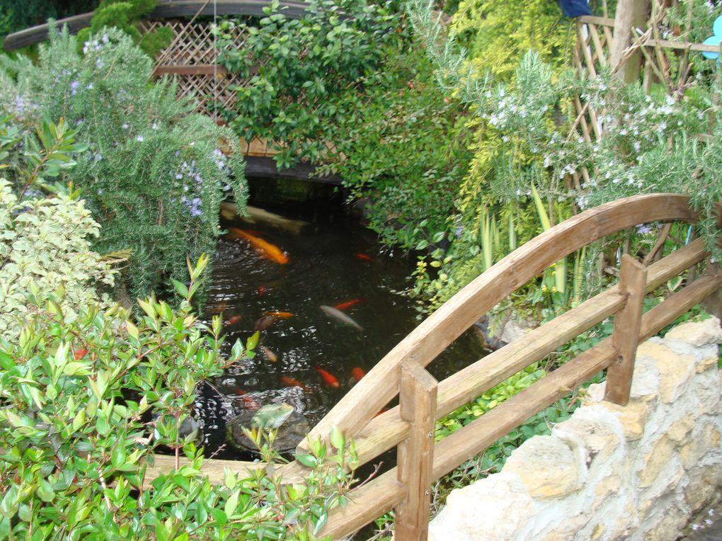 ouvert aux visites chaque jour de l'année LE CLOS FLEURI a tout d'un grand parc .  Créé en 1998 dans un esprit 'jardin anglais' ce jardin est beau toute l'année...