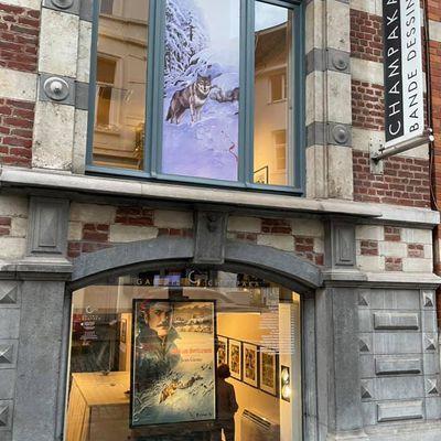 Exposition vente Galerie Champaka à Bruxelles