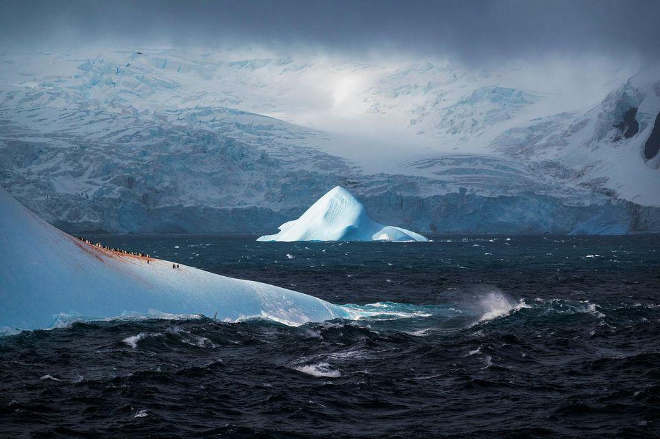 L'île de l'Eléphant située au nord-ouest de l'Antarctique, dans les îles Shetland du sud, en décembre 2019. Photo Camille Seaman