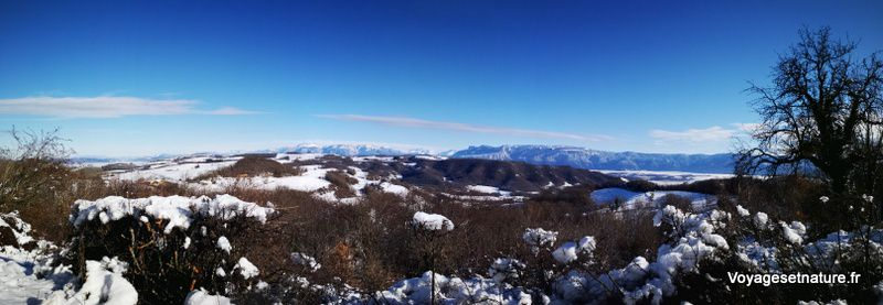 L'hiver est arrivé dans les Chambaran...