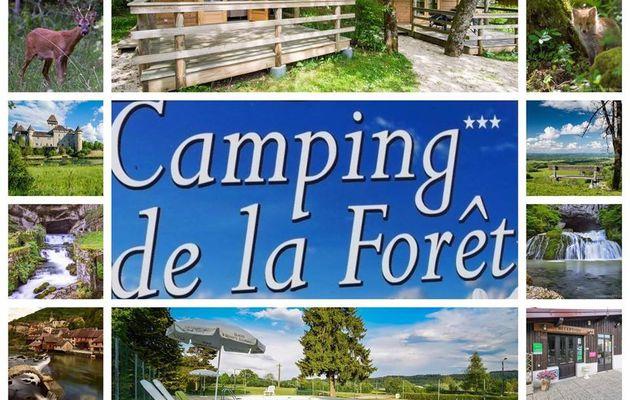 Entreprise du mois de juin 2019 – Le Camping de la Forêt à Levier