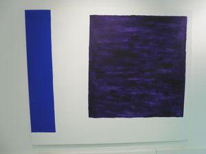 "Didier Demozay ""Noir, noir, vert"" (2012) et ""Bleu outremer, violet"" (2013)."