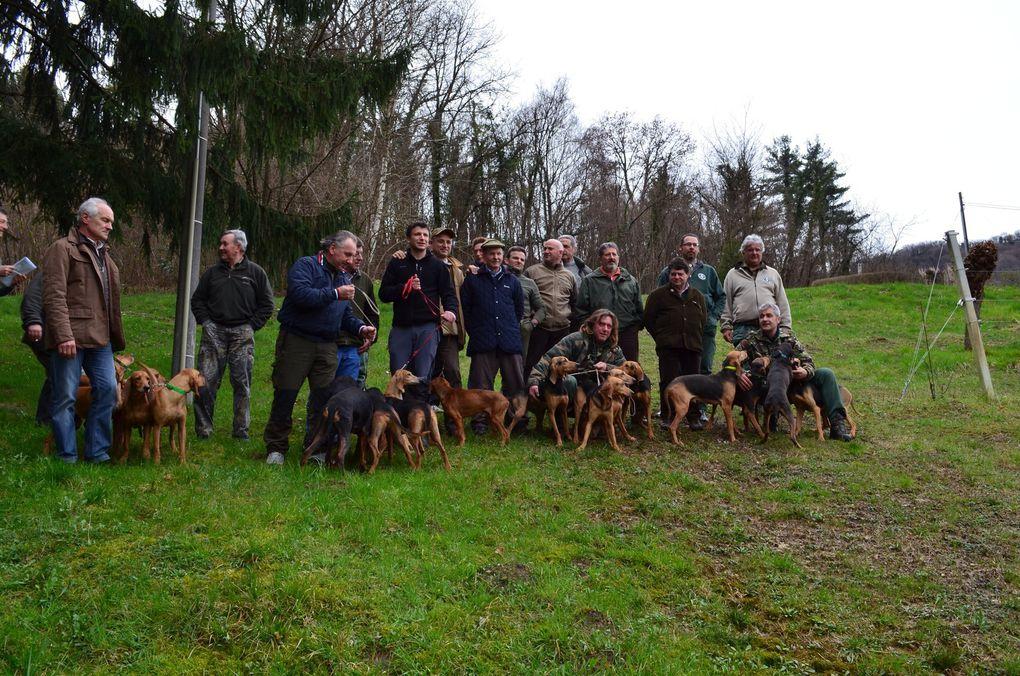 Nei colli del prosecco DOCG di Treviso, grande successo per la gara cani da seguita su lepre ARCI Caccia.