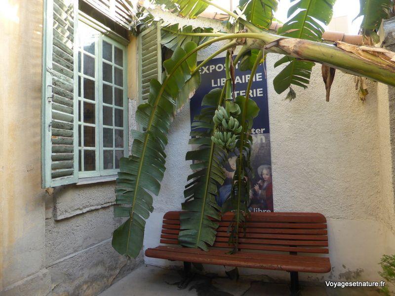 Visite du Vieux Menton et du musée Jean Cocteau (06)