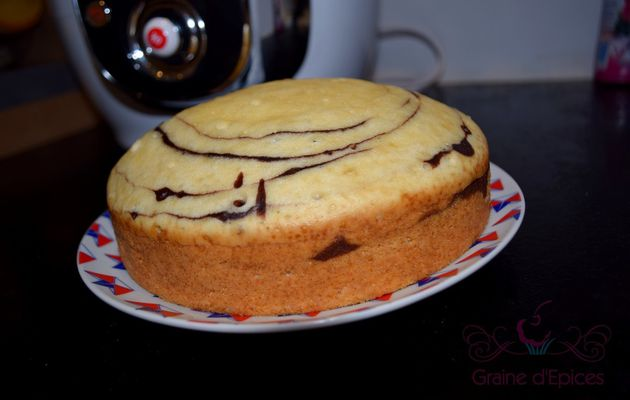 Gâteau zébré au Cookéo