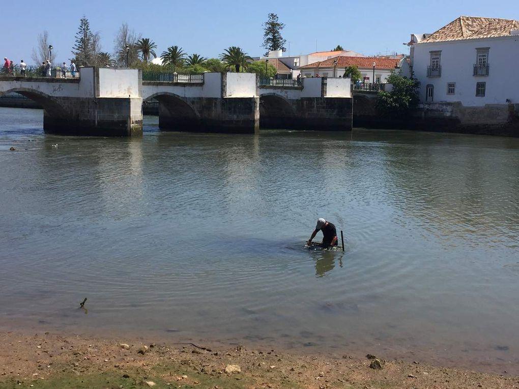 Complètement à l'ouest, ou l'Algarve dans toute sa splendeur - Episode II : le Sotavento
