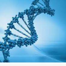 Janvier, le mois de la biotechnologie...