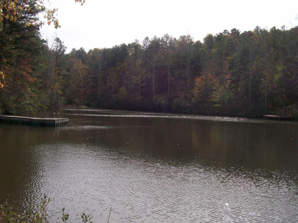 Caché au milieu des bois (sa maison se devine à peine), Mike profite aussi de son étang. Cadre idyllique...